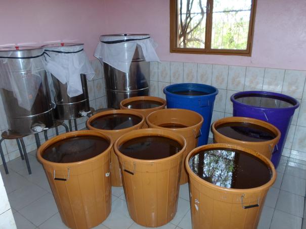 Collecte et traitement du miel