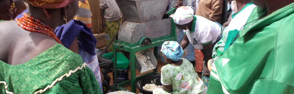 Broyeur de manioc