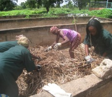 Fabrication de compost
